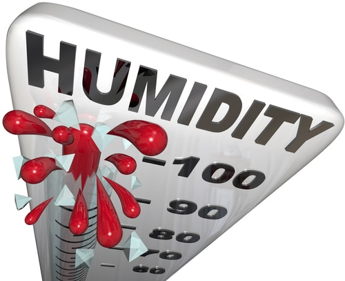 Humidity Is The Problem!